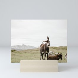 Cute smiling donkey in Seceda, near Ortisei  | Dolomites Italy travel photography Art Print Mini Art Print
