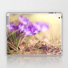 on the ground II Laptop & iPad Skin