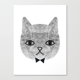 The sweetest cat Canvas Print