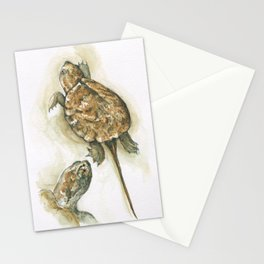 Otis the Snapper Stationery Cards