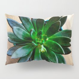 In the Green Pillow Sham