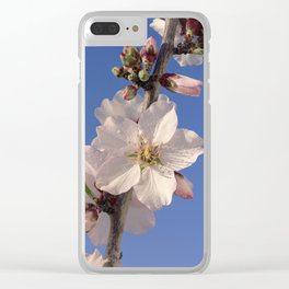 Almond blossom branch Clear iPhone Case