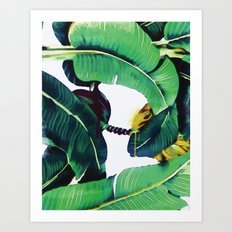 Martinique Banana leaf Beverly Hills Print Watercolor Art Print