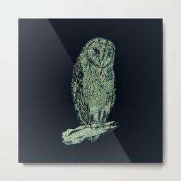 Tyto alba Metal Print