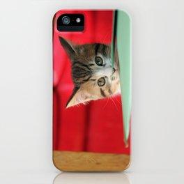 Little Pip iPhone Case