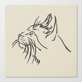 Wishful Whiskers Cat Canvas Print