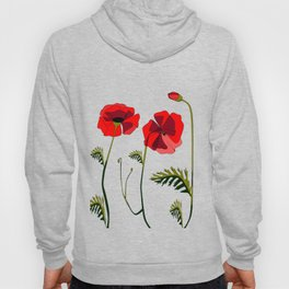 Poppies Ascending (transparency) Hoody