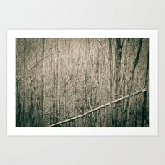 Can't see the Trees for the Wood Art Print