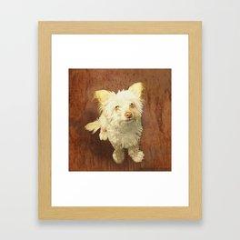 Murphy Dog Framed Art Print