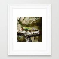 lizard Framed Art Prints featuring Lizard by WonderfulDreamPicture