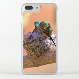 Hummingbird Baby in the Nest by Reay of Light Clear iPhone Case