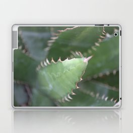 Agave Pads & Spines Laptop & iPad Skin