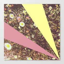 Daisies, Remixed Canvas Print
