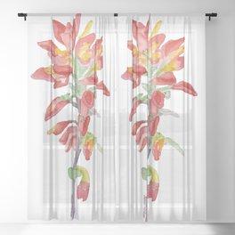 Indian Paintbrush Wildflower Watercolor Sheer Curtain