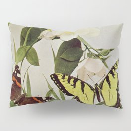 Vintage Butterflies in Nature Illustration (1899) Pillow Sham