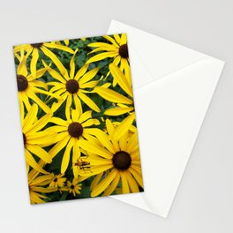 Golden Rudbeckia flowers in the garden Stationery Cards