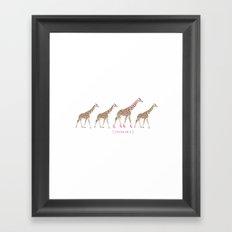 Stand Out - Giraffes Framed Art Print