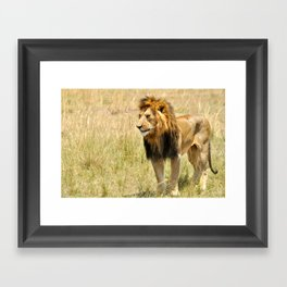 African King Framed Art Print