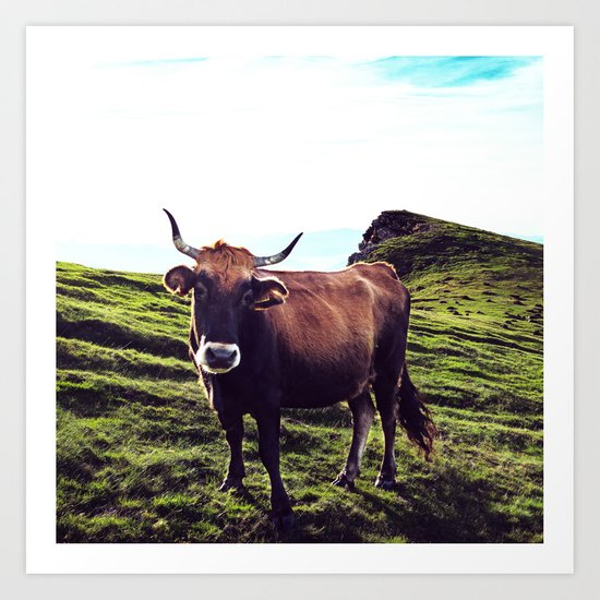 Cow in the Alps, Mountains Art Print