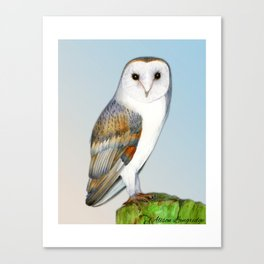 Barn Owl Bird  Nature Wildlife Artist Alison Langridge. Watercolor Art Woodland Farmland Owl Canvas Print