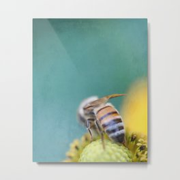 Honeybee on Teal Blue and Yellow Metal Print