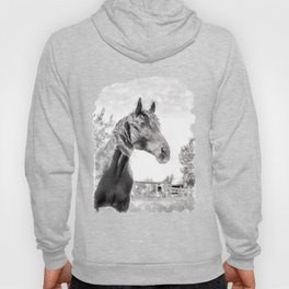 Horse in the Field.  Black and White. Watercolor Painting Style. Hoody