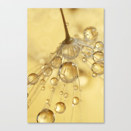 Golden Drops Canvas Print
