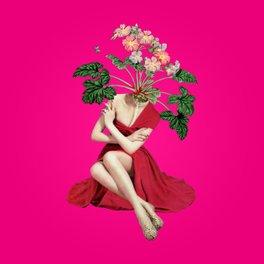 Framed Art Print - In Season - Eugenia Loli