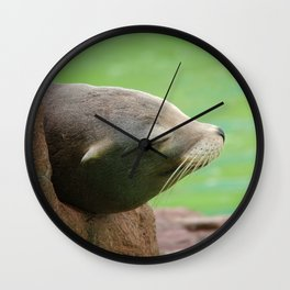 Sleepy Sea Lion Wall Clock