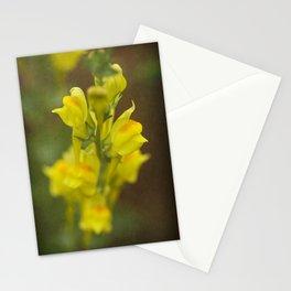 Montana  Wildflower Stationery Cards