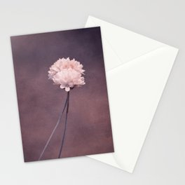 fall in love I Stationery Cards