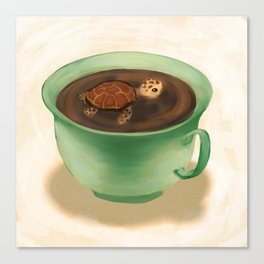 Tea Turtle Canvas Print