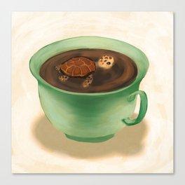 Tea Turtle Canvas Print