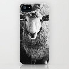 Sheep Slim Case iPhone (5, 5s)