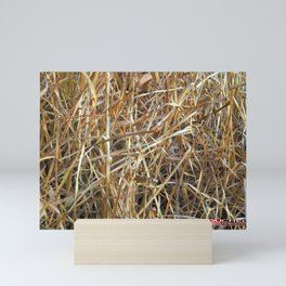 Dry Grass Mini Art Print