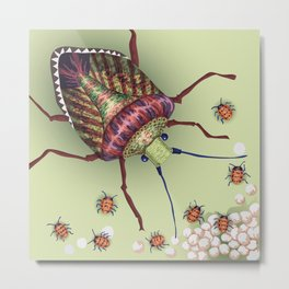 The Stink Bugs Are Coming! Metal Print