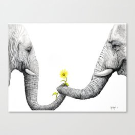 """Up Close You Are More Wrinkly Than I Remembered"" Canvas Print"