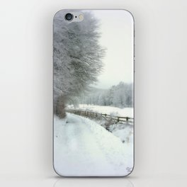 Wintertime iPhone Skin