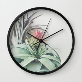 Air Plant Collection II Wall Clock
