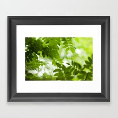 Green Dreams 4348 Framed Art Print
