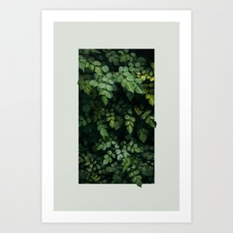 Growth Art Print