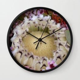 Fur Coat Protea Wall Clock