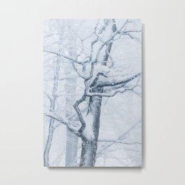 Frozen snowy tree Metal Print