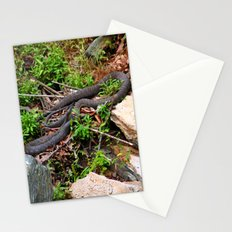 Copperheads Stationery Cards