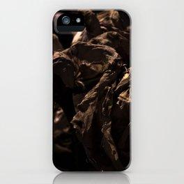 Fold 2 iPhone Case