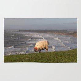 Sheep at Rhossili Bay Rug