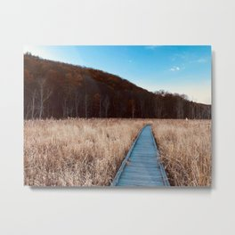 A walk on the AT Metal Print