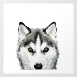 Siberian Husky dog with two eye color Dog illustration original painting print Art Print