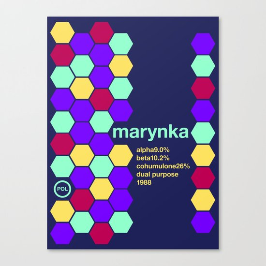 marynka single hop Canvas Print