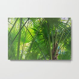 Sunny Tropical Palms 2 Metal Print